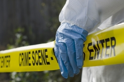5 Top Forensic Science Programs for International Students