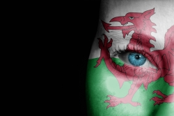 5 Must-See Films That Explain Wales to International Students