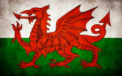 Study Abroad Guide: Wales for International Students
