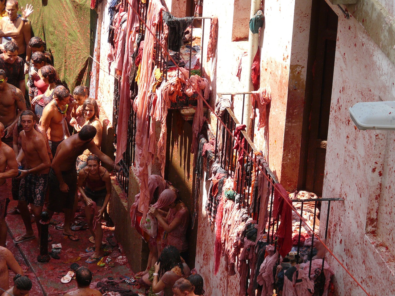 Tomatina, Spain, Student World Online